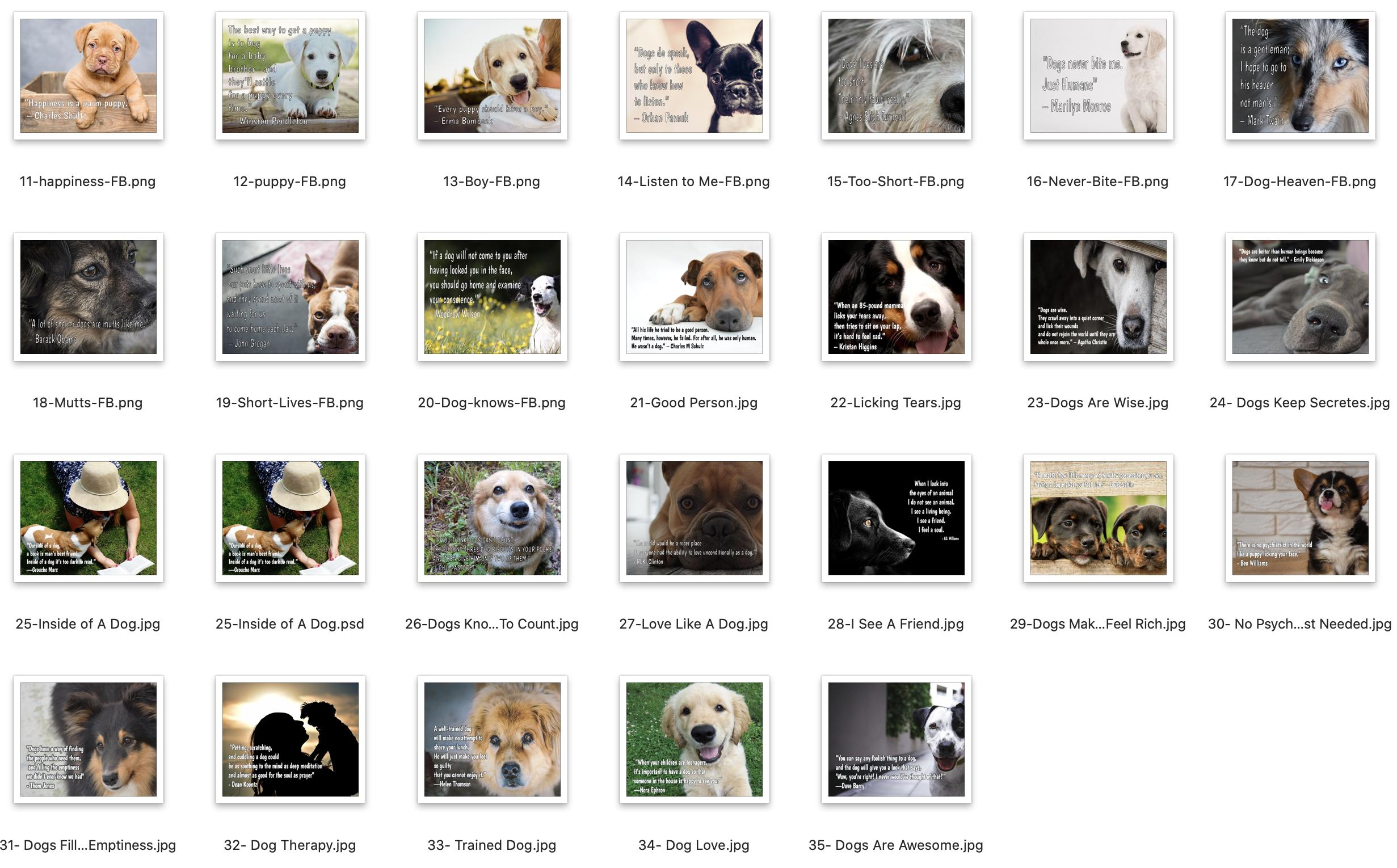 Instagram Dog Quotes