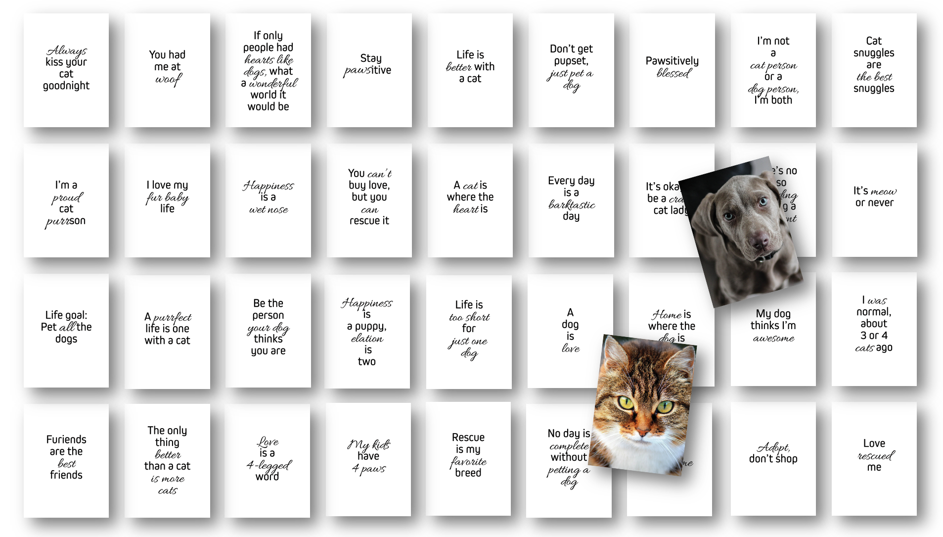 Dogs and Cats Card Deck with Private Label Commercial Use Rights
