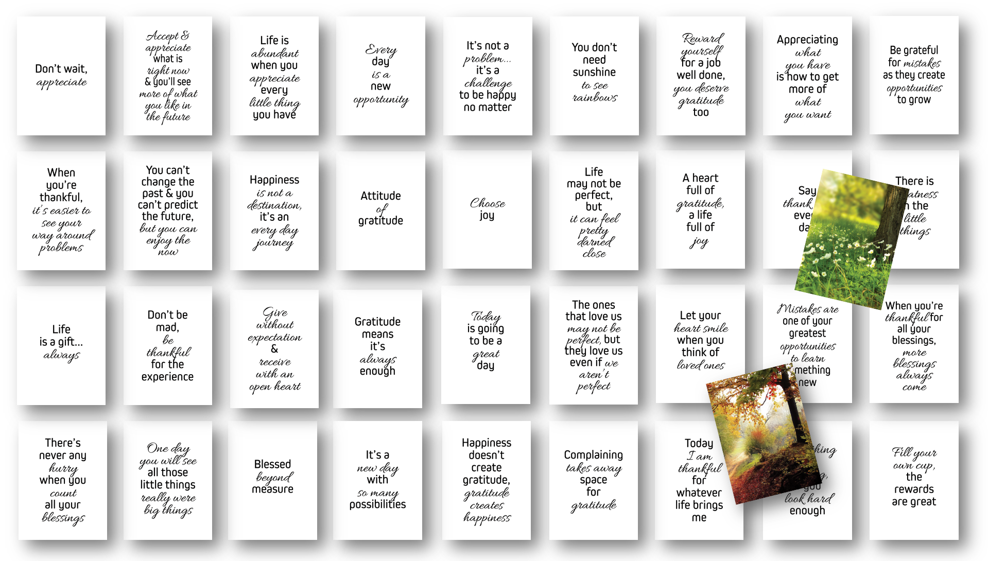 Gratitude Card Deck with Private Label Rights