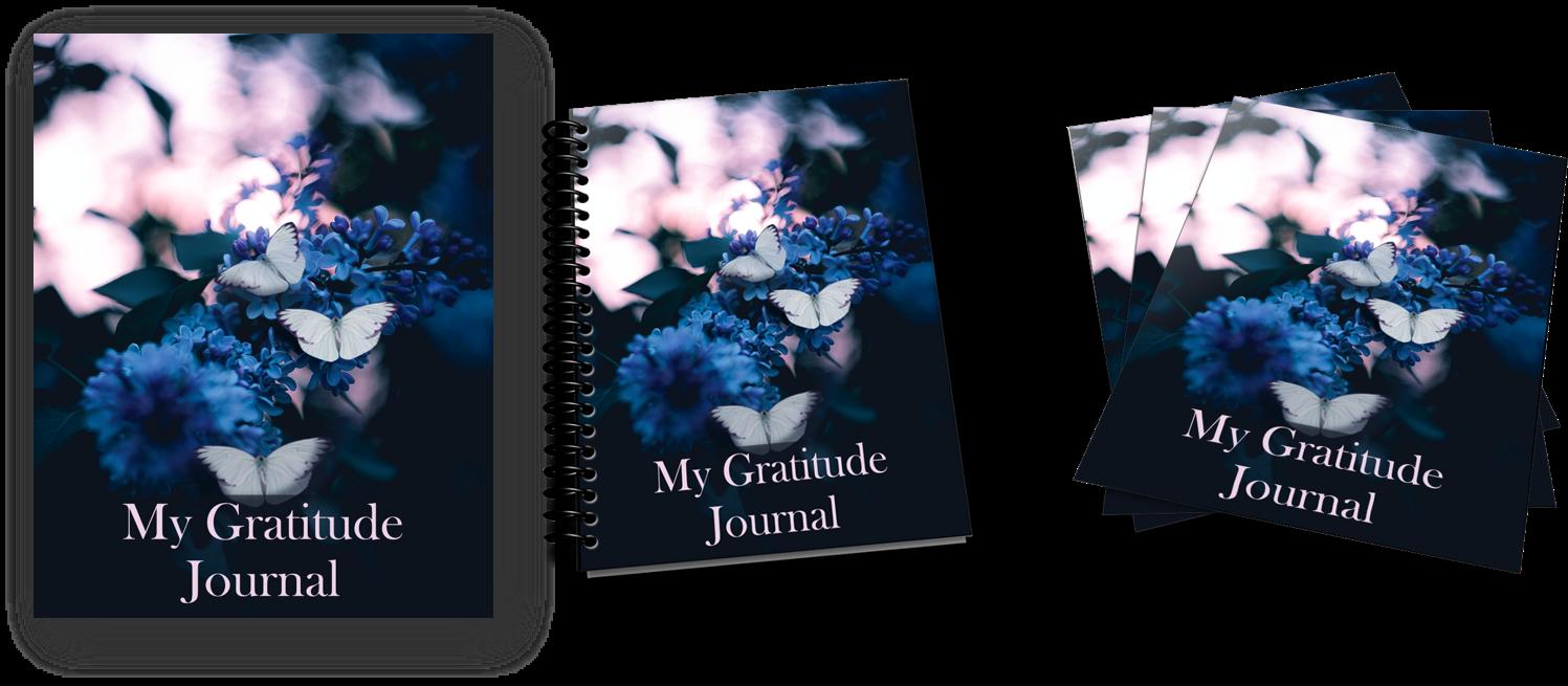 gratitude journal ecovers image