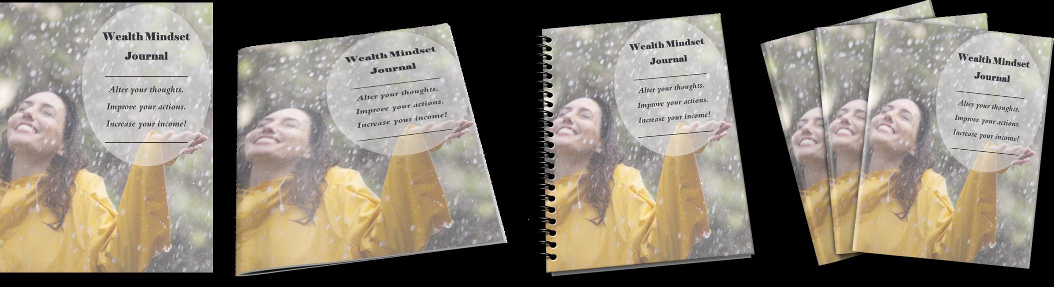 4 wealth mindset ecovers